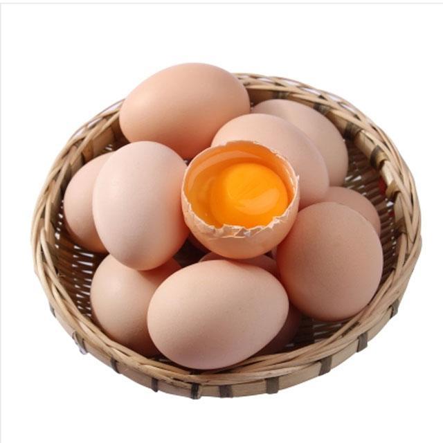 农场土鸡蛋(8只装)