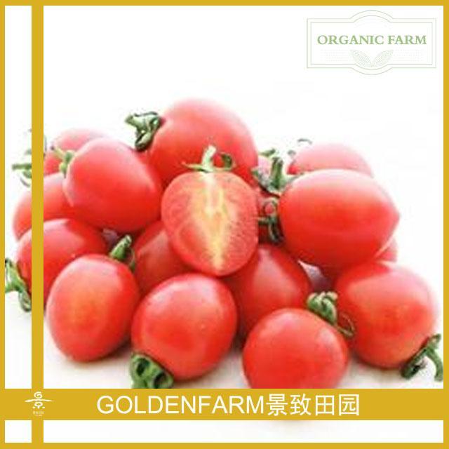 小红番茄 500g [有机种植]