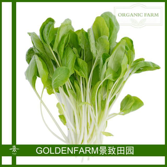 长梗白菜 300g [有机种植]