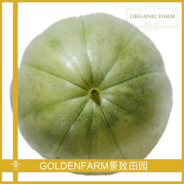 青皮绿肉甜瓜 500g [有机种植]