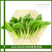 上海青 300g [有机方式种植]