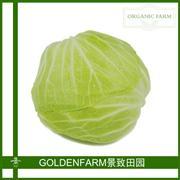 包心菜 500g [有机种植]