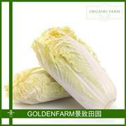 大白菜 300g [有机种植]
