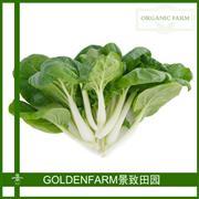 奶白菜 300g [有机方式种植]