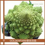 宝塔菜 350g [有机种植]