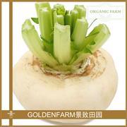盘菜(萝卜类)300g [有机种植]