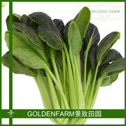 紫冠青菜 300g [有机方式种植]