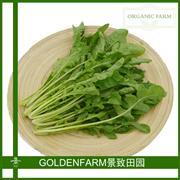 芝麻菜 300g [有机方式种植]