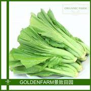 芥菜 300g [有机方式种植]