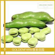 蚕豆 300g [有机种植]
