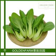 青梗菜 300g[有机方式种植]
