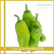 青椒 300g [有机方式种植]