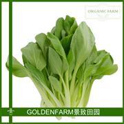 青菜(605) 300g [有机方式种植]