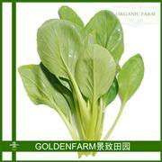 鸡毛菜 300g [有机方式种植]